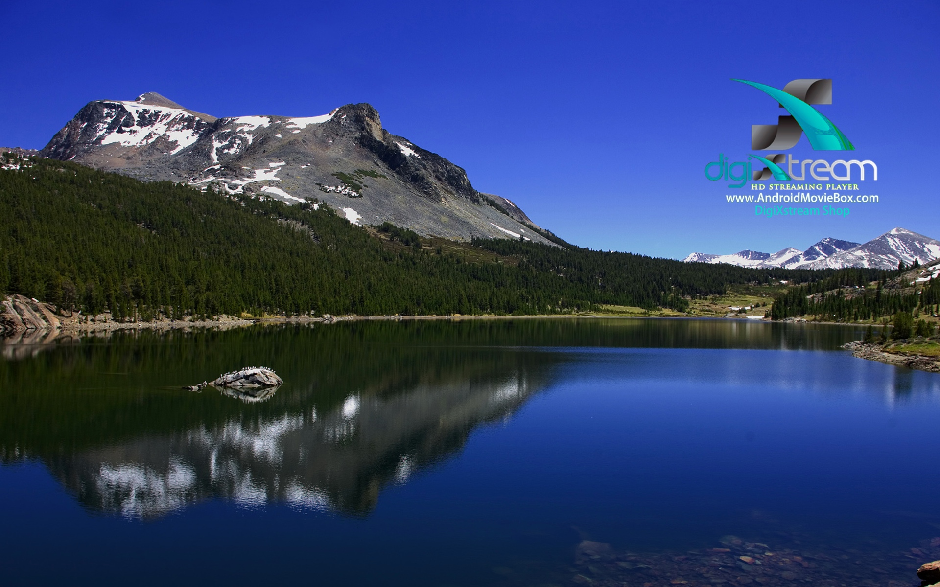 DigiXstream AndroidMovieBox Background moutain water